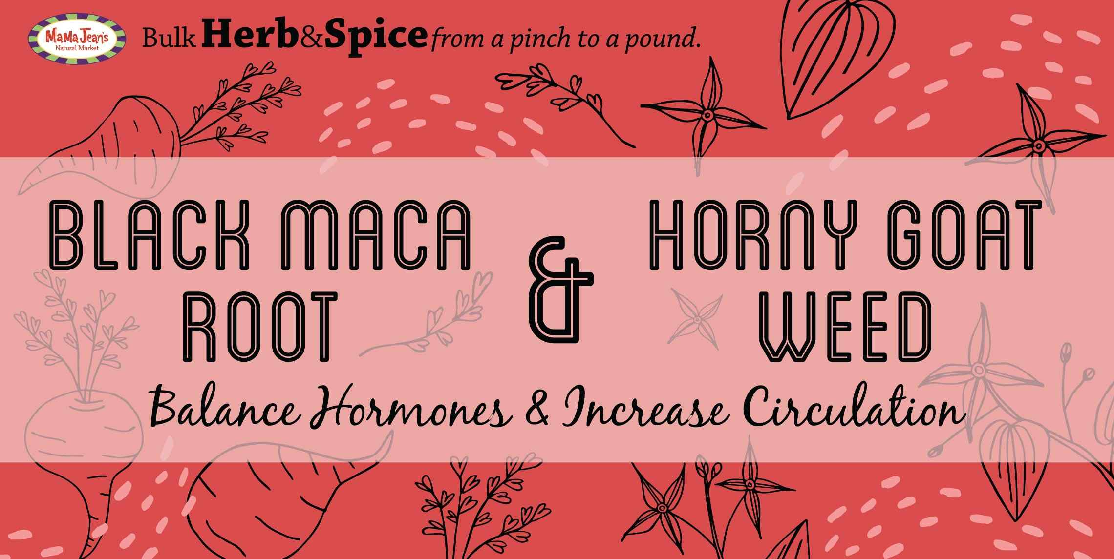 How long does horny goat weed last